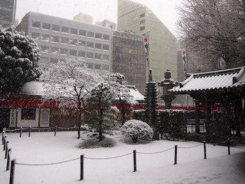 雪の豊川 (1).JPG